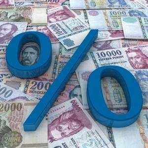 Hitelügyintézés